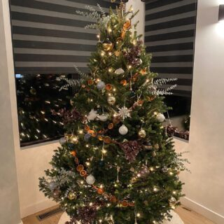 Wow! We are blown away with your entries...and gorgeous trees! Keep them coming!
